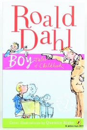 dahl-colours-boy-1
